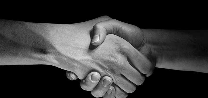 7 pasos para crear relaciones mas solidas