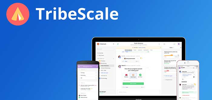 TribeScale