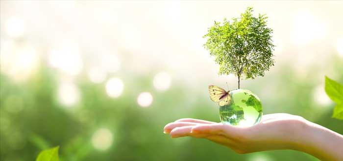 Medio ambiente y triple impacto
