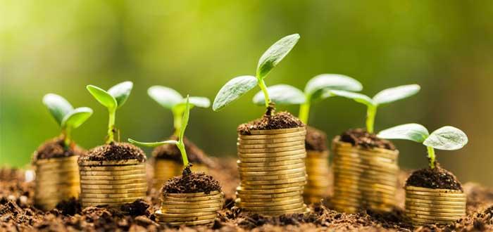 Monedas y plantas sembradas