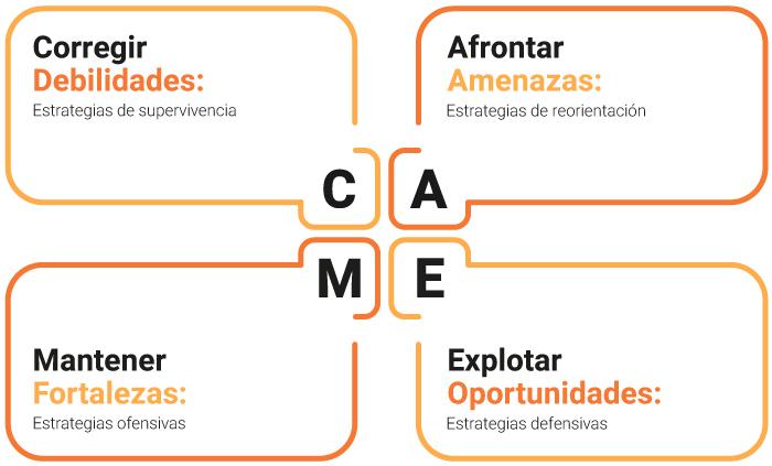 grafico-análisis-CAME