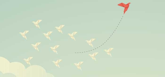 Pájaro de papel se atreve a cambiar